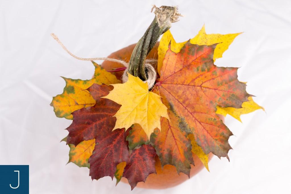 Dyniowe dekoracje - dynia - liście 2 | Justine Crafts