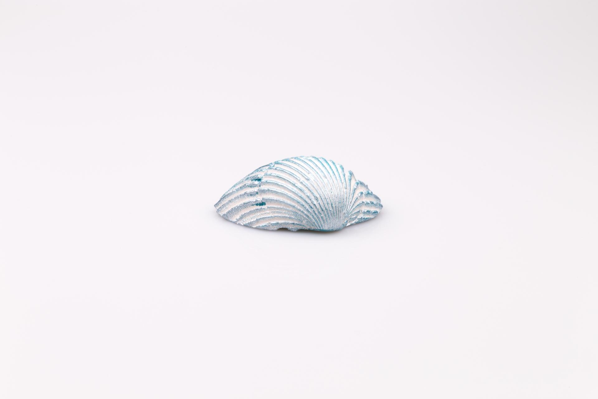 Justine Crafts | Muszla błękitna