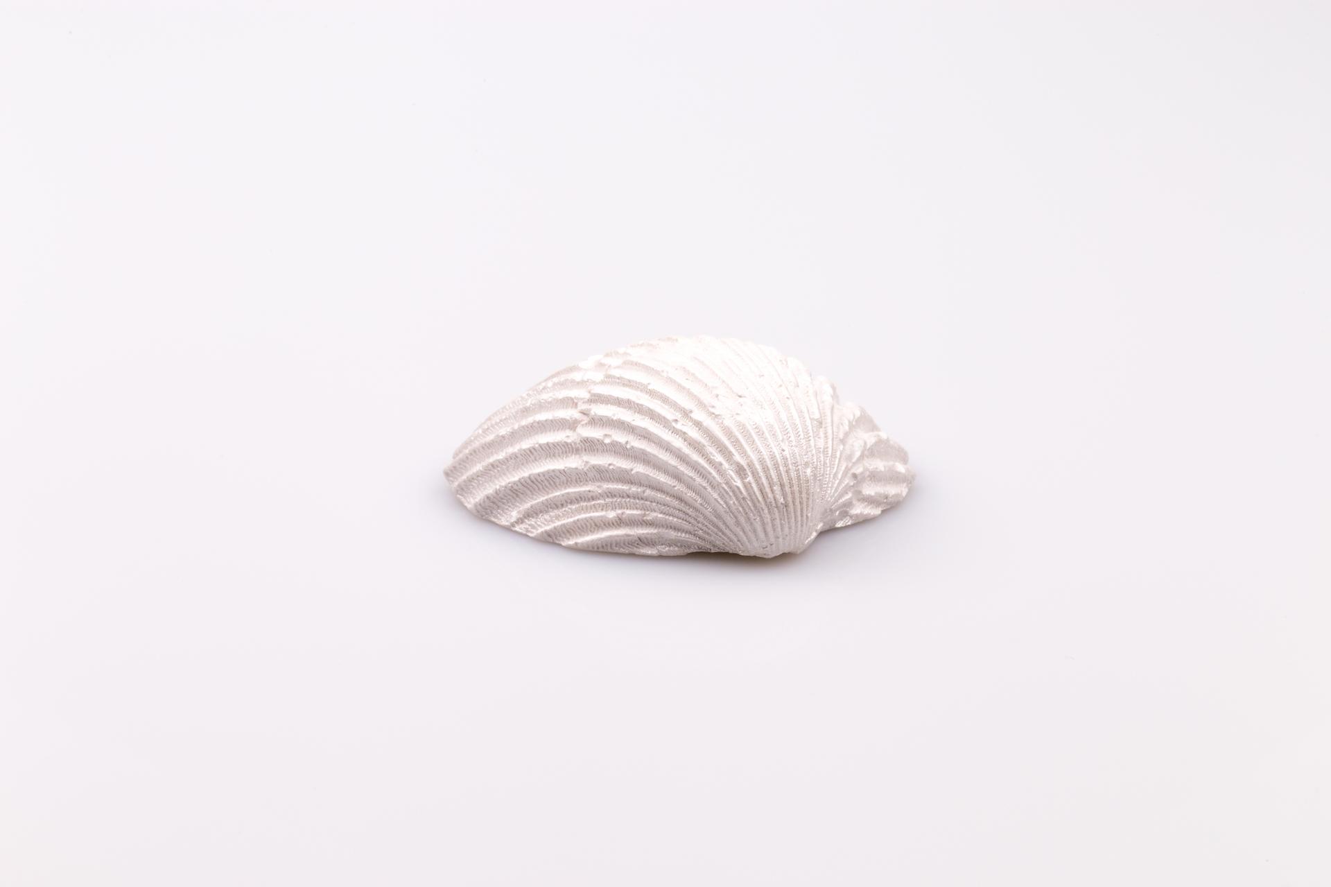 Justine Crafts | Muszla perłowa